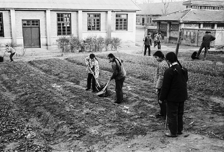 School Garden in China